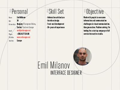 Interface Designer Resume resume cv