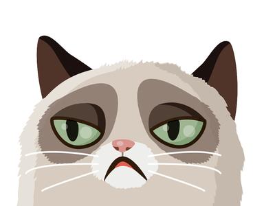 Vector grumpy cat
