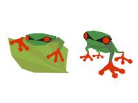 Frog Origami Design