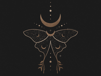Cosmic Luna Moth Illustration By Mel Volkman