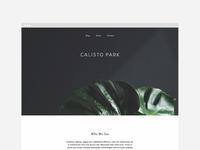 Calisto Park | website