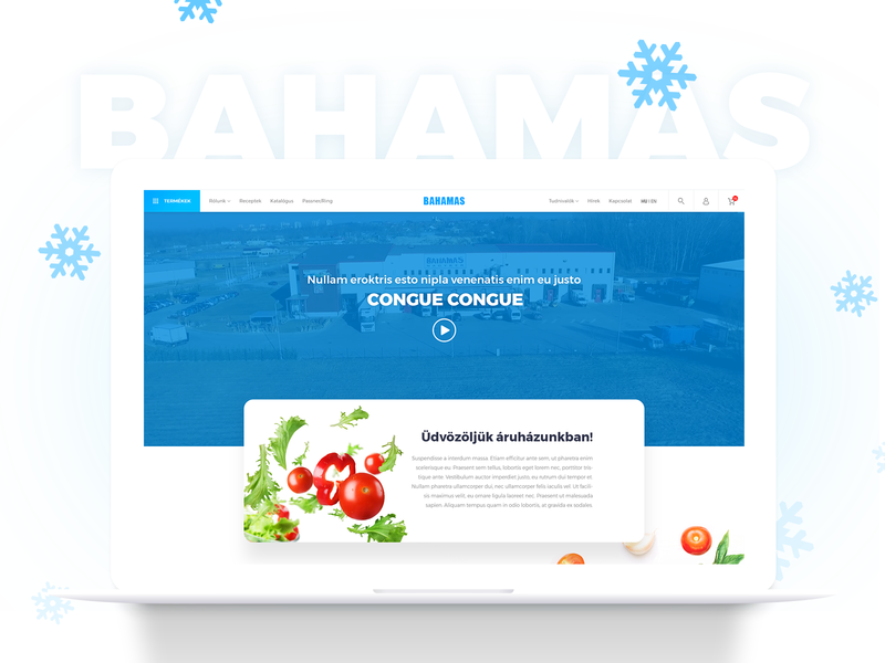 Bahamas redesign modern clean redesign blue webshop food frost website webdesign ux ui