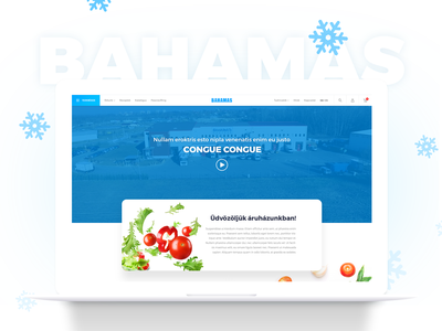 Bahamas redesign modern clean redesign blue webshop food frost website webdesign ux ui