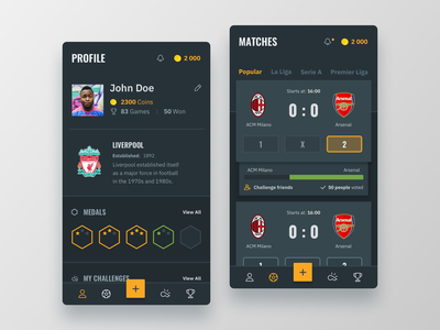 Profile & Matches medals challenges cards badges profile interface darkui dark app gamification matches ux ui