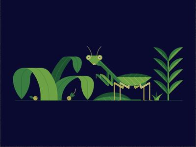 Mantis texture shapes design geometric plants mantis vector illustration