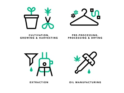 Seed to patient medicinal cultivation cannabis iconography line icon vector illustration