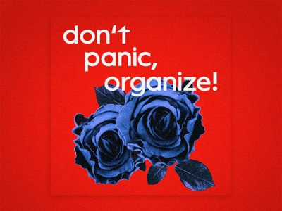 Don't panic, organize! editorial activism organize socialism photoshop red typography vector