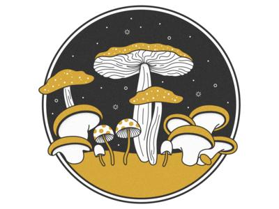 Magic of the Mushrooms