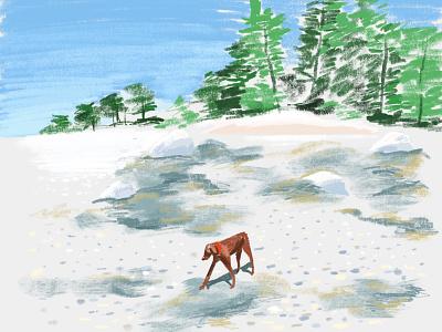 Sawyer in Maine maine illustration