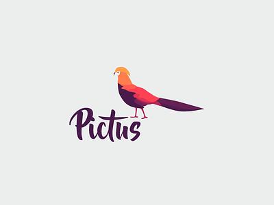 Pictus  mark vector purple gradients design illustrator texture pattern graphic design identity branding logo