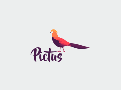 Pictus  mark vector purple gradients design illustrator texture pattern graphic design identity branding logo
