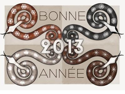 Bonne Année 2013 2013 illustration holiday card print design