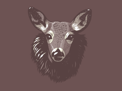 Deer Head Illustration portrait apoka artwork edouard artus deer animal animals adobe fresco ipad pro illustration