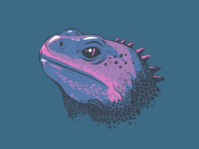 Tuatara Head illsutration pink blue dark animal head animals lizard vectorart vector adobe fresco ipad pro portrait apoka artwork edouard artus illustration
