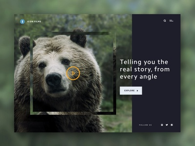 Film Company Video Banner ui homepage website web banner video grizzly bear wildlife nature tv film