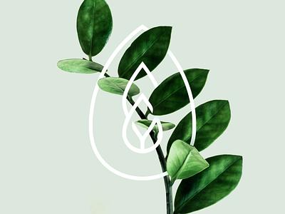 🌿 leaf logo typography emblem drop water tree nature a leaf logotype letter monogram symbol logo