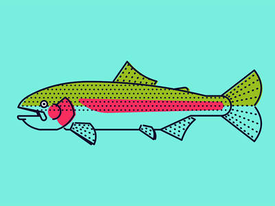 Rainbow Trout stroke illustration fishing trout fish