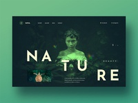 Nature - Web UI Experiment Project