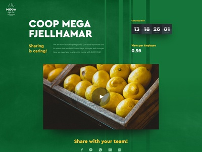 Mega High Five counter list statistics one page site website ux