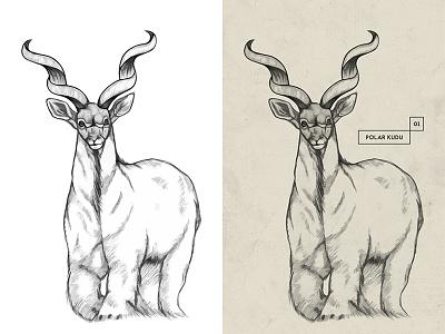 HYBRID . Polar Kudu . Drawing illustration concept monster hybrid paper pencil animal kudu beast creature artwork drawing
