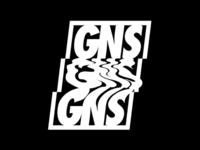 wip GNS logo