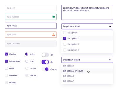 Design System 1.0 - Detailed ios minimal icon ux mobile ui web app details design system design