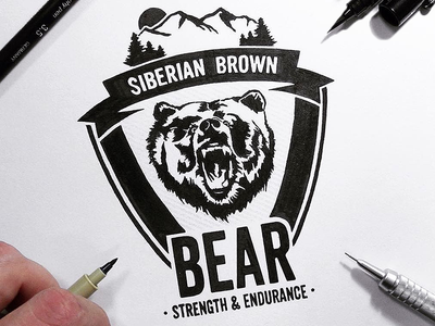 Siberian Brown Bear: Strength & Endurance siberian siberia brown bear logotype logo illustration art calligraphy letters lettering handlettering