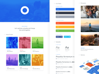 Optimize —Branding Style Guide