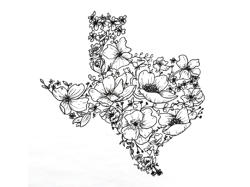 Texas Wildflowers By Rorymade On Dribbble