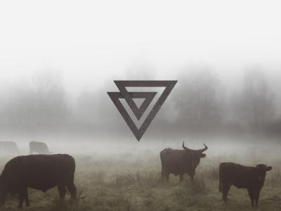 JV mark jv j v personal mark symbol logo brand taurus triangle fog monogram brandmark