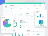 Website analytics and Review management