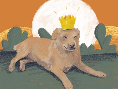 Dog with crown puppy digital illustration digital painting dog illustration prince crown procreate dog