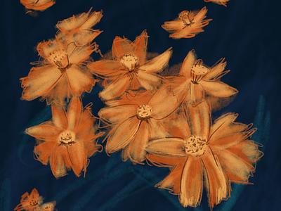 Flowers illustration botanical orange flowers floral digital painting flowers