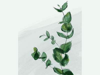 Leaves leaf leaves sketch procreate plants