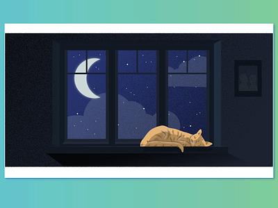 sleep illustration restful peaceful window inside night cat moonlight sleep moon