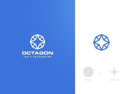 Logo option for Octagon flat tax accounting octagon icon vector design modern branding logo