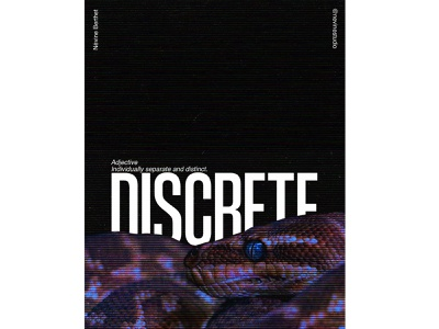 DISCRETE photoshop poster a day creative creative design abstract visual art photo editing artwork art direction poster design poster affiche typographie typography reptile serpent snake discrete