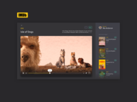 #016 Video Overlay