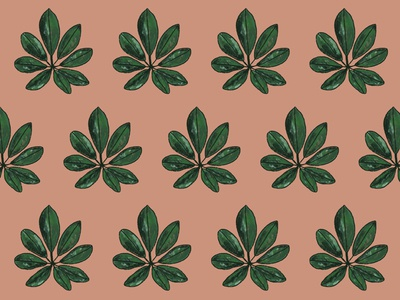 Custom illustrated pattern design for Maeli florist foliage blush visual identity brand identity pattern illustration branding