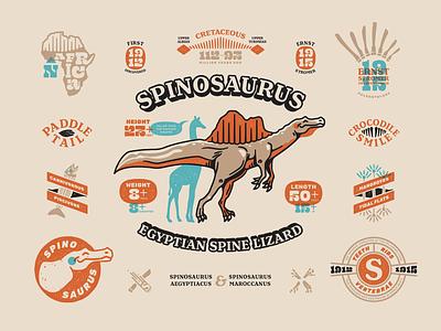 Spinosaurus Info Sheet fossil character spinosaurus dinosaur badge branding typography illustration vector
