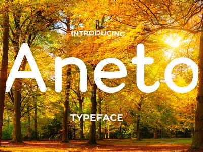 Aneto Font Package display font sans serif font rounded font fonts typography typeface logo font font design design creative market branding