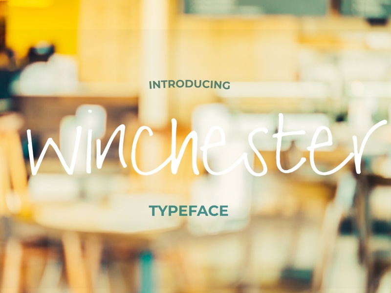 Winchester Font Pack brush fonts branding vector hand drawn handwriting font typography logo fonts font font design typeface
