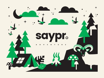 Saypr Adventure Flag