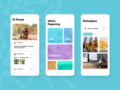 Dog Community App UI