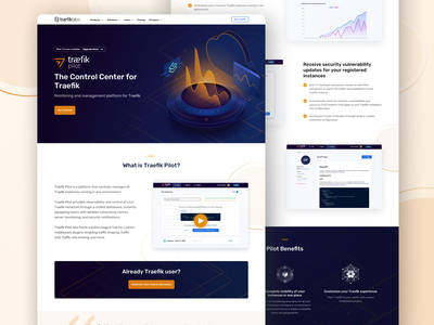 Traefik Pilot Landing Page icon design icon uidesign web design website code illustration ui web