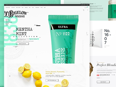 CO Bigelow  elements ui visual design mint white space typography minimal grid body beauty web design design