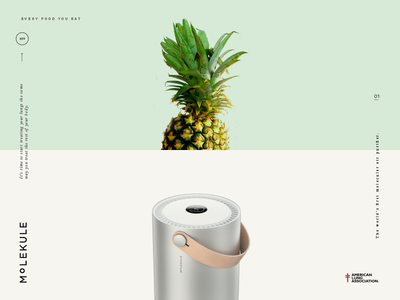 Molekule Campaign Two branding color concept identity advertising layout ui print product typography type logo