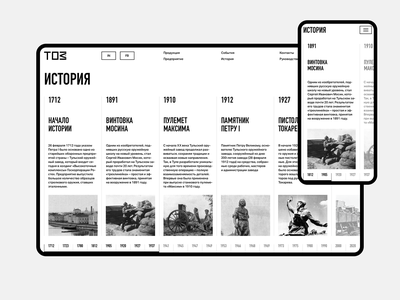 TOZ. Storyline. website mobile fullscreen minimal ux ui responsive concept clean web grid