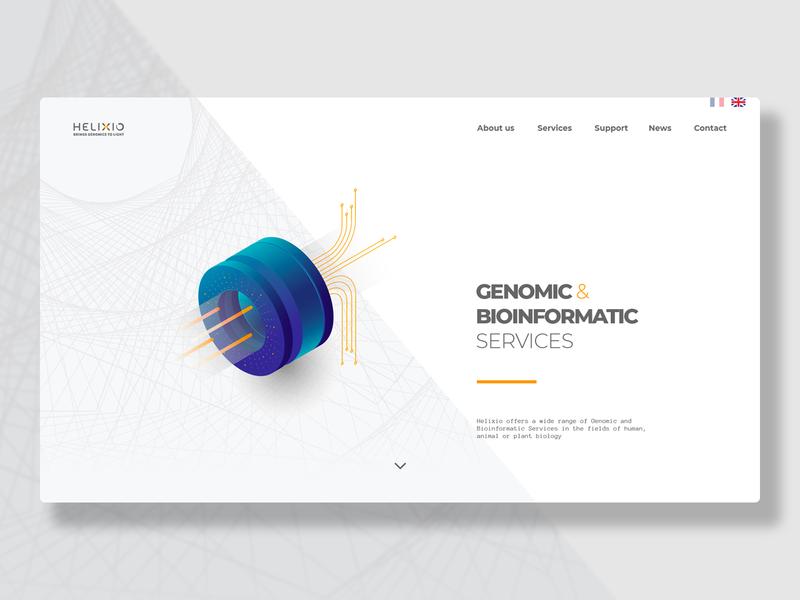 Bioinformatic Web concept web first draft science biology bioinformatic debut ux graphic ui design