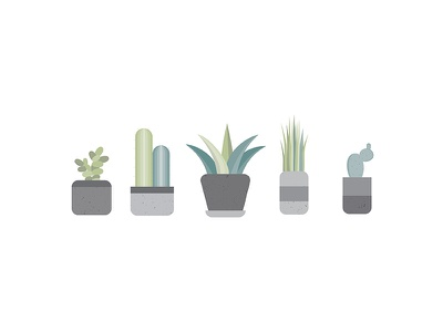 Succulents For Days sidecar illustrator photoshop texture icons greenery plants succulent